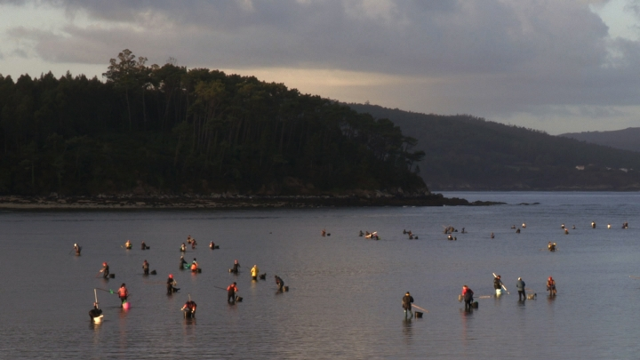 Local shellfish harvesters on the Costa da Morte