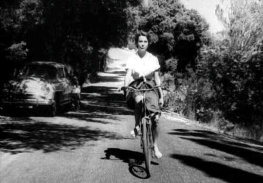Reel Spokes Bikes On Film The Case For Global Film