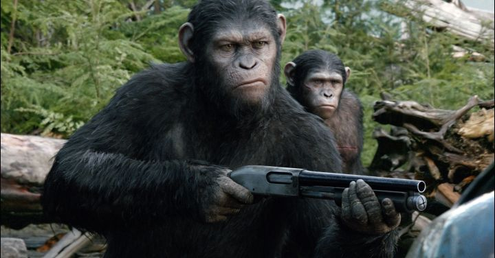 A still showing the extraordinary detail in the faces of the apes.