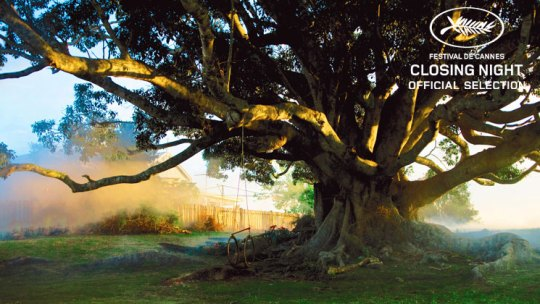 The tree stands in its 'magical reality'