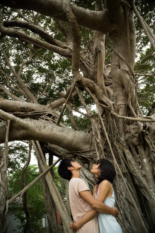 Kyoko and Kaito beneath the ancient banyan tree in the mangrove forest.