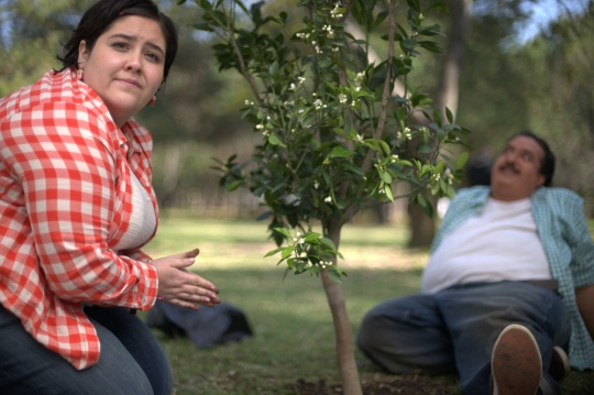 Carmen and Alfredo plant their tree in a local park when they leave home for the big city.