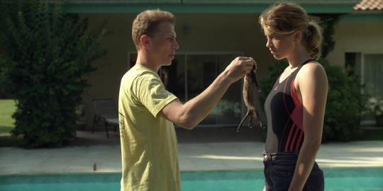 Arnaud has found a baby ferret that has fallen in Madeleine's family's swimming pool – what's the best thing to do with it?