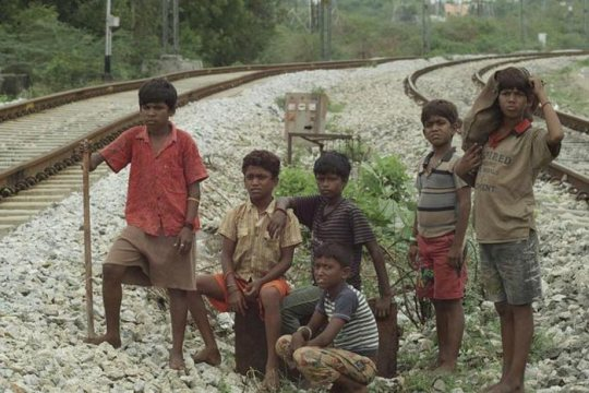 The local boys waiting to ambush a train. The stick is used to knock the mobile phones out of the hands of passengers sat by open doorways.